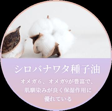 「シロバナワタ種子油」オメガ6、オメガ9が豊富で、 肌馴染みが良く保湿作用に 優れている
